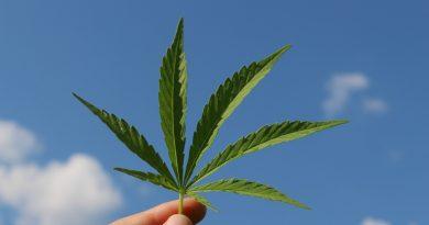 Cannabis light la nuova direttiva per i negozi