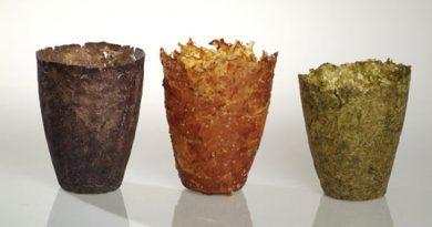 Eco Arte, piatti totalmente ecologici