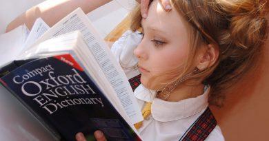 Liceo o diploma professionale? Quali sono le opportunità lavorative