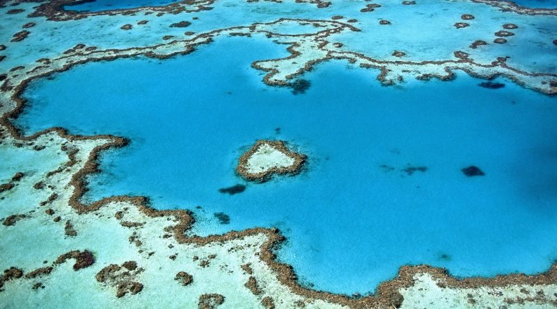 Australien-Das Naturwunder Great Barrier Reef